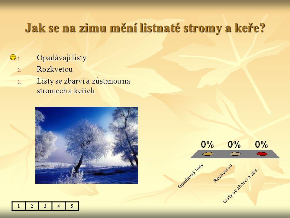 Jak se na zimu mění listnaté stromy a keře? 12345 1. Opadávají listy 2. Rozkvetou 3. Listy se zbarví a zůstanou na stromech a keřích