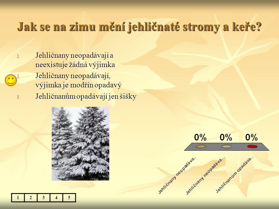 Jak se na zimu mění jehličnaté stromy a keře? 12345 1. Jehličnany neopadávají a neexistuje žádná výjimka 2. Jehličnany neopadávají, výjimka je modřín