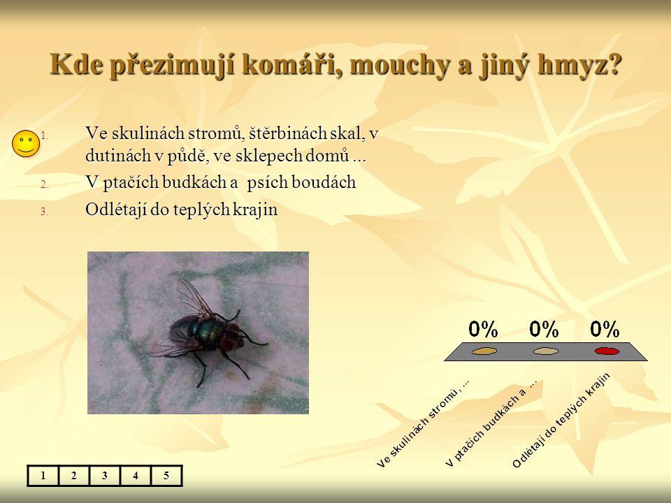 Kde přezimují komáři, mouchy a jiný hmyz? 12345 1. Ve skulinách stromů, štěrbinách skal, v dutinách v půdě, ve sklepech domů... 2. V ptačích budkách a