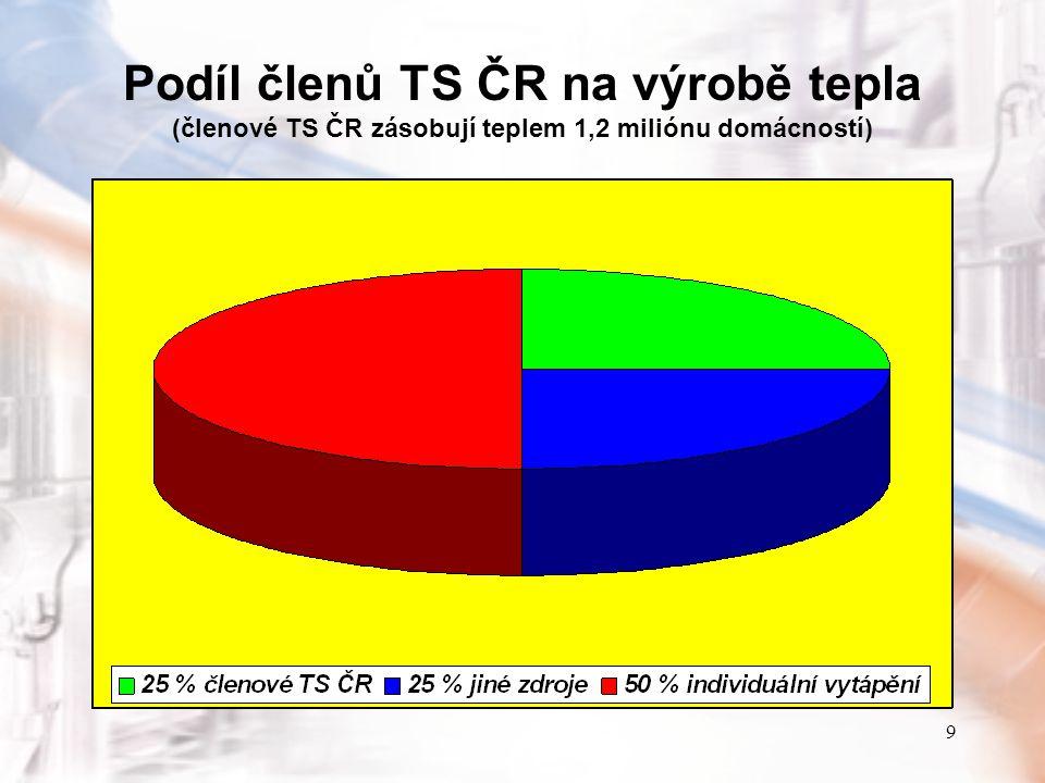 10 Podíl TS ČR na výrobě elektřiny (39 členů TS ČR včetně ČEZ jsou také výrobci elektřiny)