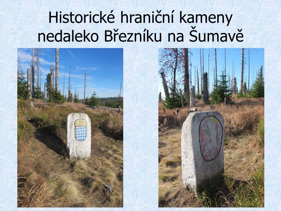 Historické hraniční kameny nedaleko Březníku na Šumavě