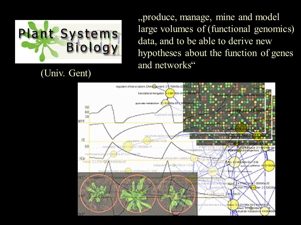 "(Univ. Gent) ""produce, manage, mine and model large volumes of (functional genomics) data, and to be able to derive new hypotheses about the function"