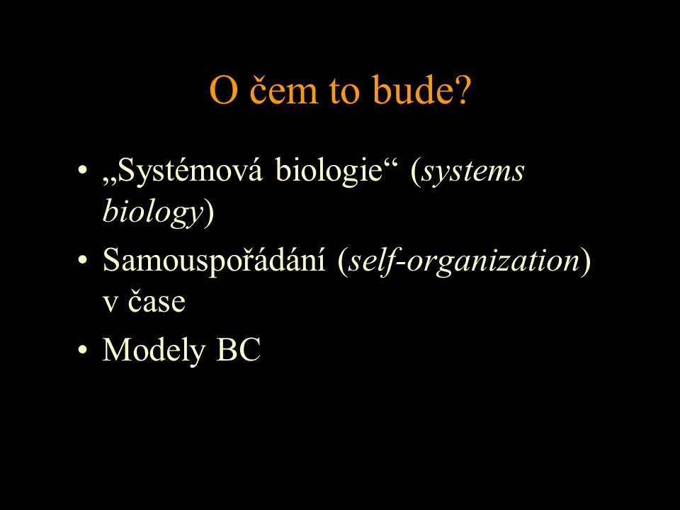 """O čem to bude? """"Systémová biologie"""" (systems biology) Samouspořádání (self-organization) v čase Modely BC"""