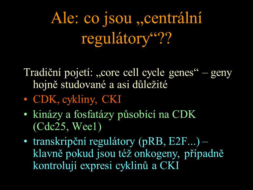"""Ale: co jsou """"centrální regulátory""""?? Tradiční pojetí: """"core cell cycle genes"""" – geny hojně studované a asi důležité CDK, cykliny, CKI kinázy a fosfat"""