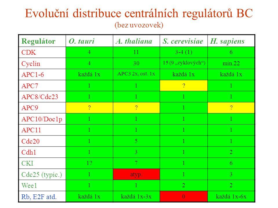 "Evoluční distribuce centrálních regulátorů BC (bez uvozovek) RegulátorO. tauriA. thalianaS. cerevisiaeH. sapiens CDK 4113-4 (1)6 Cyclin 430 15 (9 ""cyk"