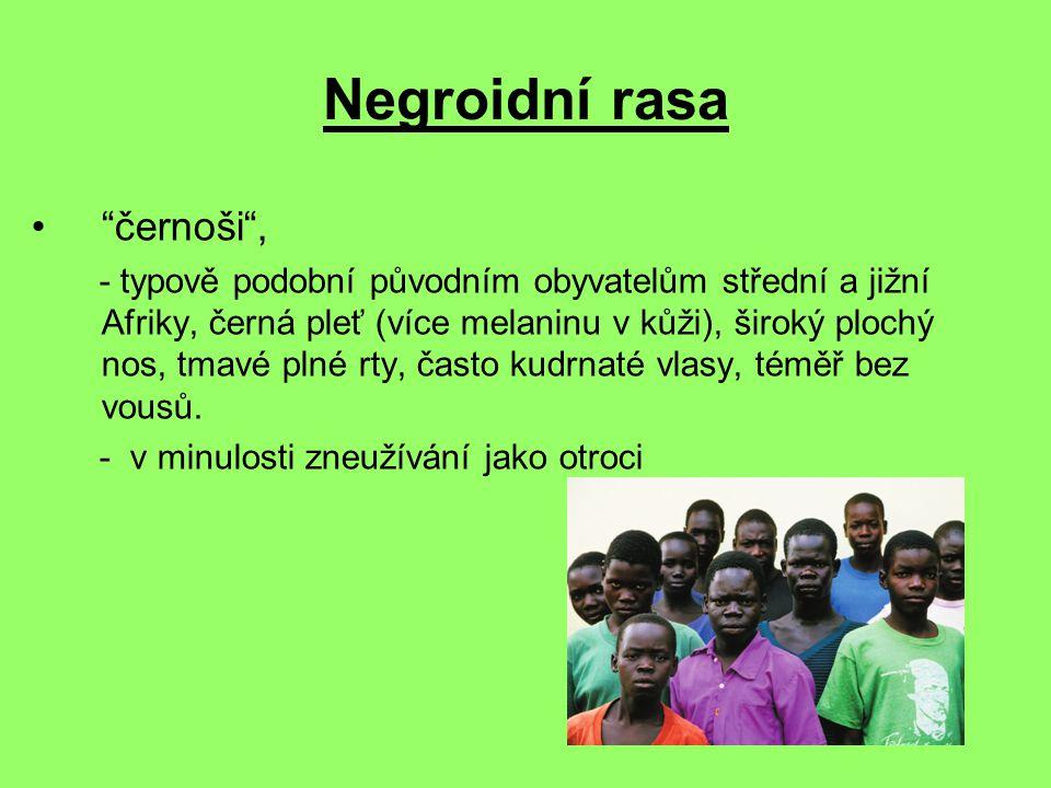 Negroidní rasa černoši , - typově podobní původním obyvatelům střední a jižní Afriky, černá pleť (více melaninu v kůži), široký plochý nos, tmavé plné rty, často kudrnaté vlasy, téměř bez vousů.