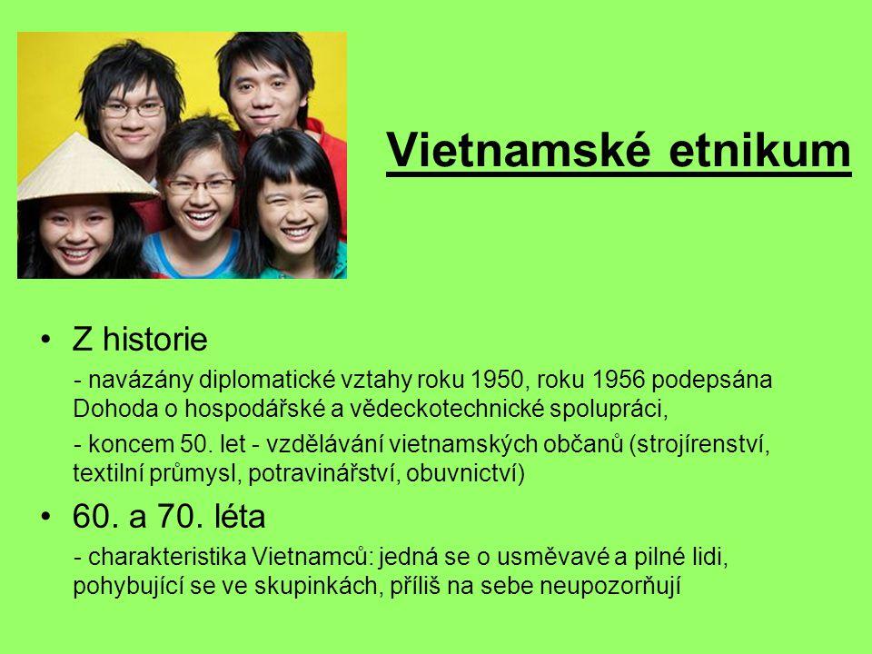 Vietnamské etnikum Z historie - navázány diplomatické vztahy roku 1950, roku 1956 podepsána Dohoda o hospodářské a vědeckotechnické spolupráci, - koncem 50.