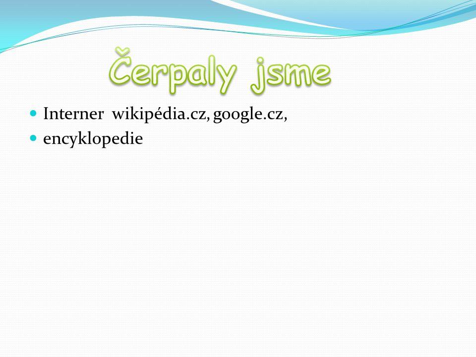 Interner wikipédia.cz, google.cz, encyklopedie