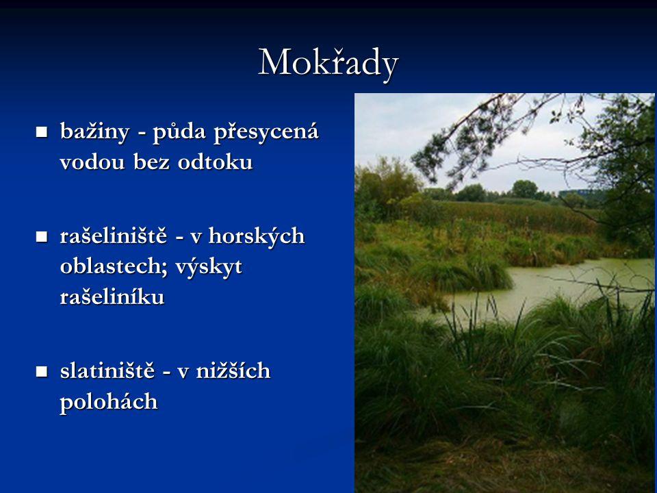 Mokřady bažiny - půda přesycená vodou bez odtoku bažiny - půda přesycená vodou bez odtoku rašeliniště - v horských oblastech; výskyt rašeliníku rašeliniště - v horských oblastech; výskyt rašeliníku slatiniště - v nižších polohách slatiniště - v nižších polohách