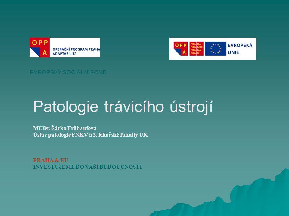 Patologie trávicího ústrojí EVROPSKÝ SOCIÁLNÍ FOND PRAHA & EU INVESTUJEME DO VAŠÍ BUDOUCNOSTI MUDr.