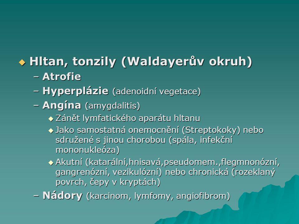  Hltan, tonzily (Waldayerův okruh) –Atrofie –Hyperplázie (adenoidní vegetace) –Angína (amygdalitis)  Zánět lymfatického aparátu hltanu  Jako samost