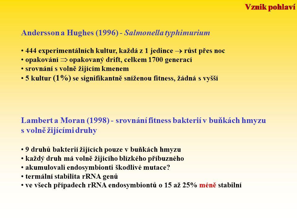 Andersson a Hughes (1996) - Salmonella typhimurium 444 experimentálních kultur, každá z 1 jedince  růst přes noc opakování  opakovaný drift, celkem