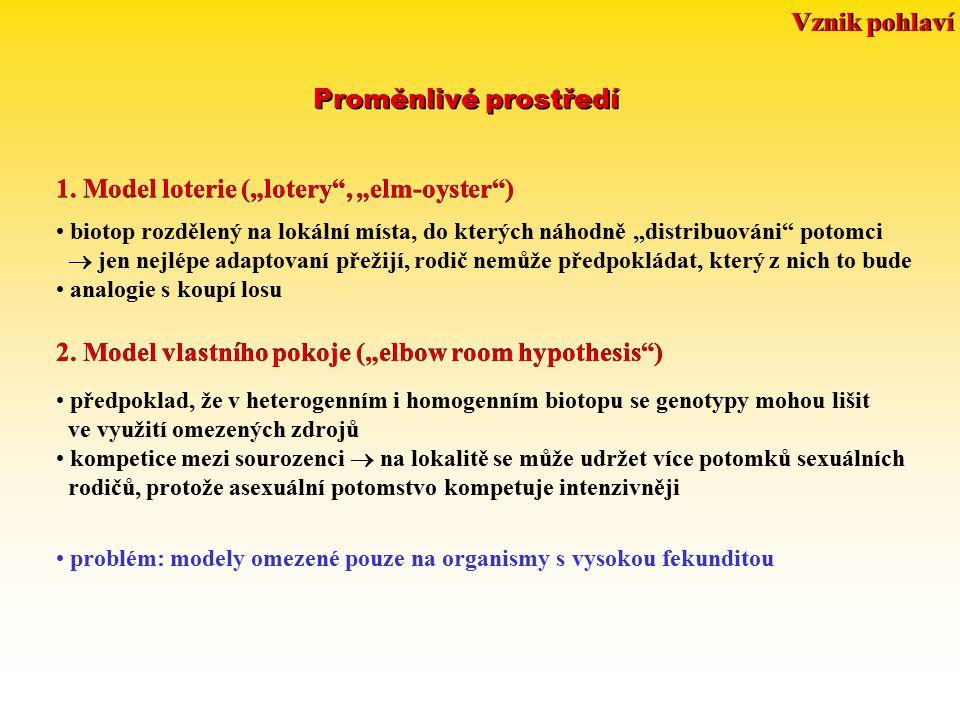 """Proměnlivé prostředí 1. Model loterie (""""lotery"""", """"elm-oyster"""") biotop rozdělený na lokální místa, do kterých náhodně """"distribuováni"""" potomci  jen nej"""