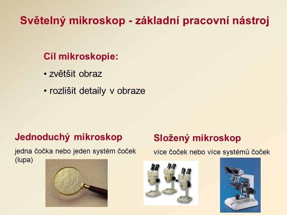 Světelný mikroskop - základní pracovní nástroj Cíl mikroskopie: zvětšit obraz rozlišit detaily v obraze Jednoduchý mikroskop jedna čočka nebo jeden systém čoček (lupa) Složený mikroskop více čoček nebo více systémů čoček