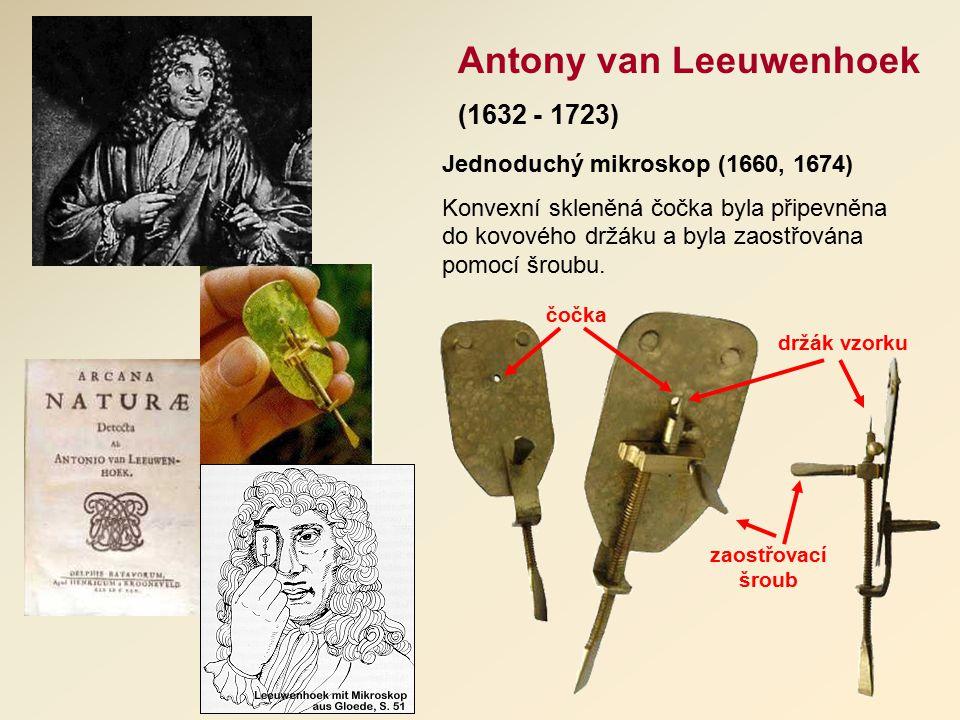 Antony van Leeuwenhoek (1632 - 1723) Jednoduchý mikroskop (1660, 1674) Konvexní skleněná čočka byla připevněna do kovového držáku a byla zaostřována pomocí šroubu.