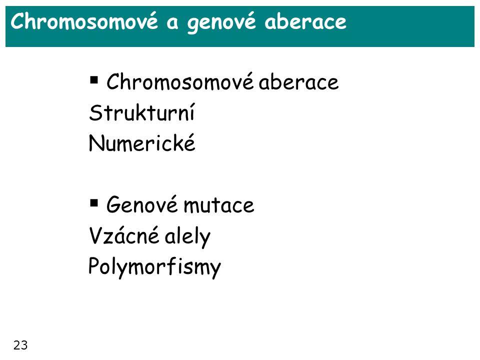 23 Chromosomové a genové aberace  Chromosomové aberace Strukturní Numerické  Genové mutace Vzácné alely Polymorfismy
