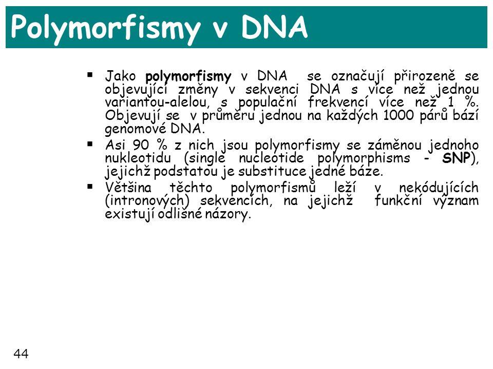 44 Polymorfismy v DNA  Jako polymorfismy v DNA se označují přirozeně se objevující změny v sekvenci DNA s více než jednou variantou-alelou, s populač