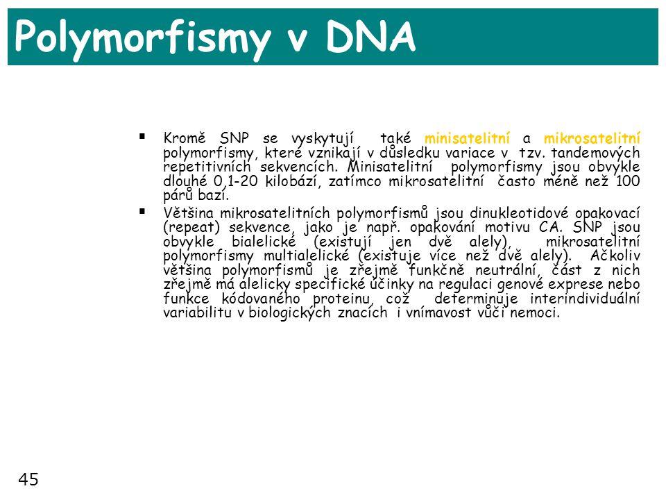 45 Polymorfismy v DNA  Kromě SNP se vyskytují také minisatelitní a mikrosatelitní polymorfismy, které vznikají v důsledku variace v tzv. tandemových