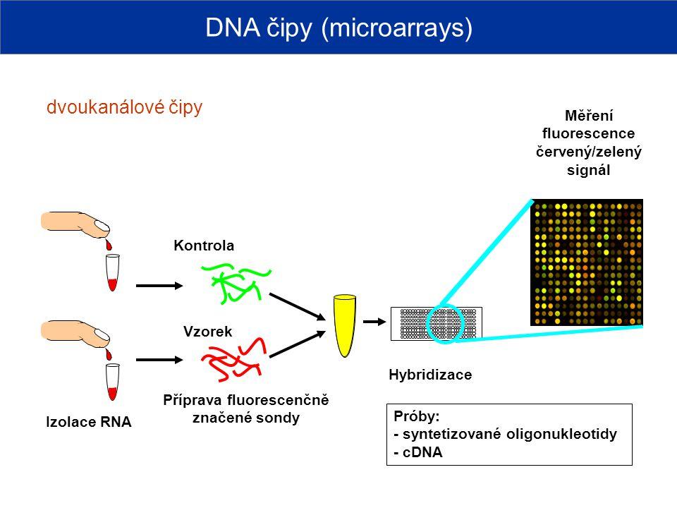Příprava fluorescenčně značené sondy Kontrola Vzorek Hybridizace Měření fluorescence červený/zelený signál Izolace RNA DNA čipy (microarrays) dvoukaná