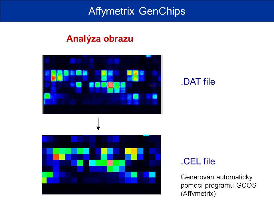 Affymetrix GenChips Analýza obrazu.DAT file.CEL file Generován automaticky pomocí programu GCOS (Affymetrix)