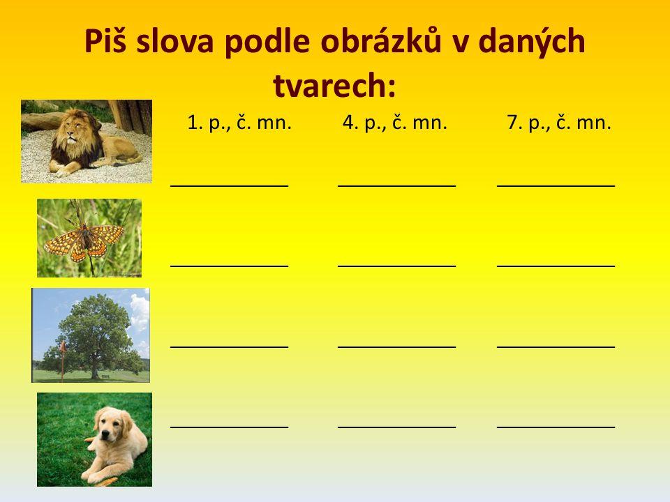Piš slova podle obrázků v daných tvarech: 1. p., č. mn. 4. p., č. mn. 7. p., č. mn. __________________________ _____________