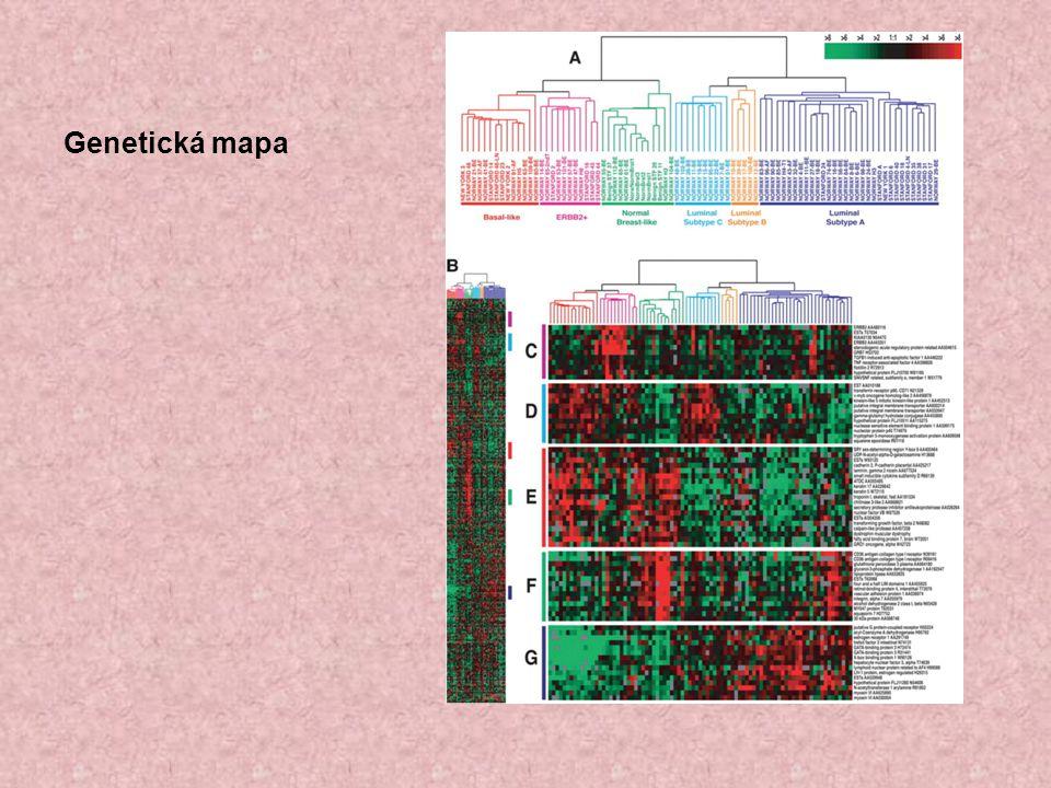 Genetická mapa