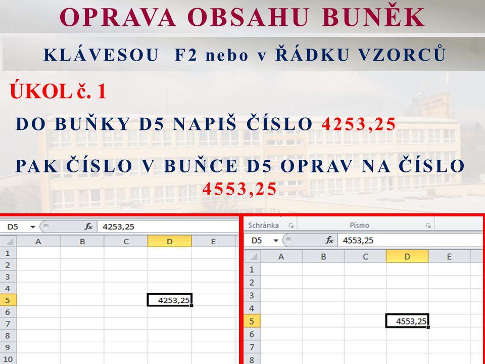 OPRAVA OBSAHU BUNĚK KLÁVESOU F2 nebo v ŘÁDKU VZORCŮ ÚKOL č.