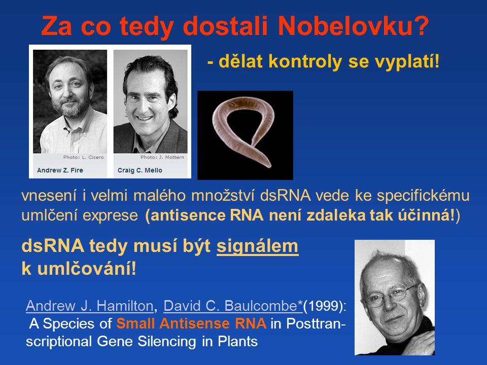 Za co tedy dostali Nobelovku.- dělat kontroly se vyplatí.
