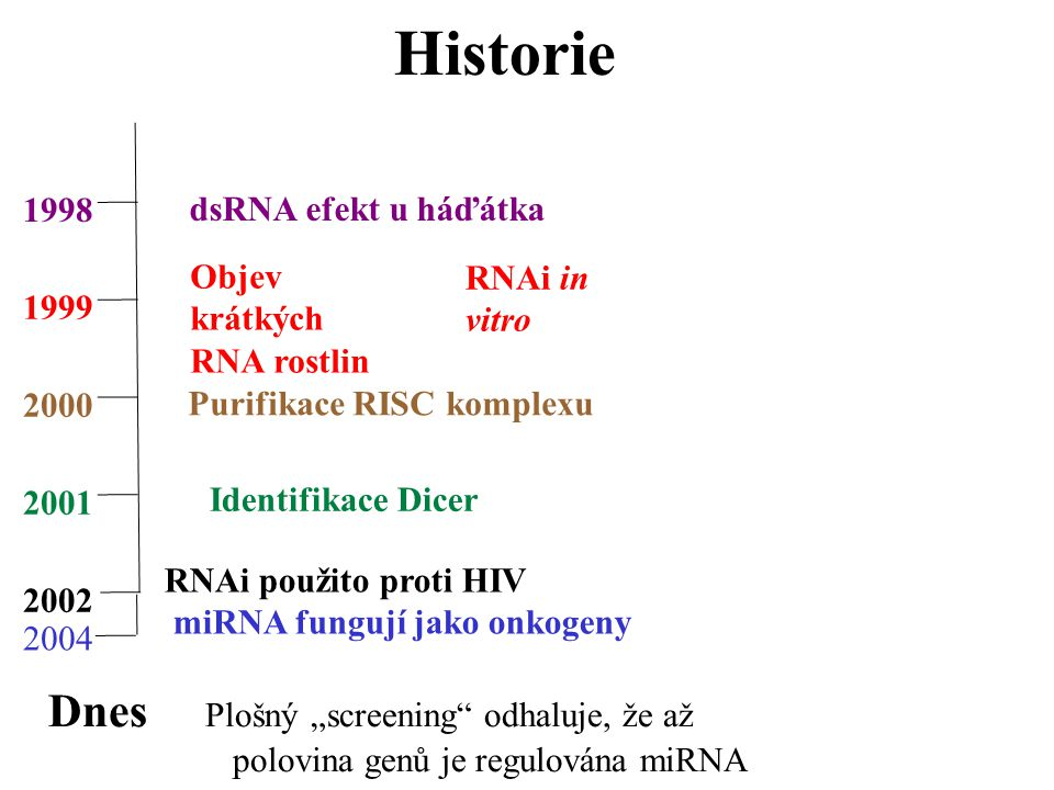 """Historie 1998 1999 2000 2001 2002 dsRNA efekt u háďátka Objev krátkých RNA rostlin RNAi in vitro Purifikace RISC komplexu Identifikace Dicer RNAi použito proti HIV miRNA fungují jako onkogeny Dnes Plošný """"screening odhaluje, že až polovina genů je regulována miRNA 2004"""