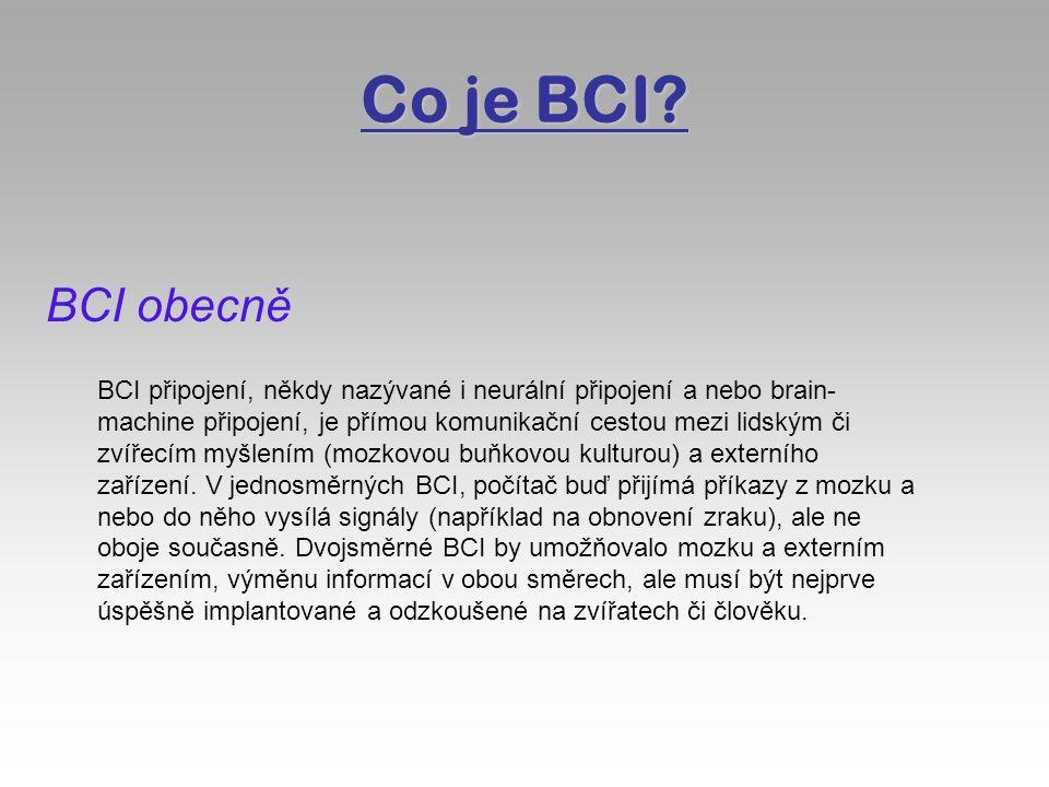 Co je BCI.