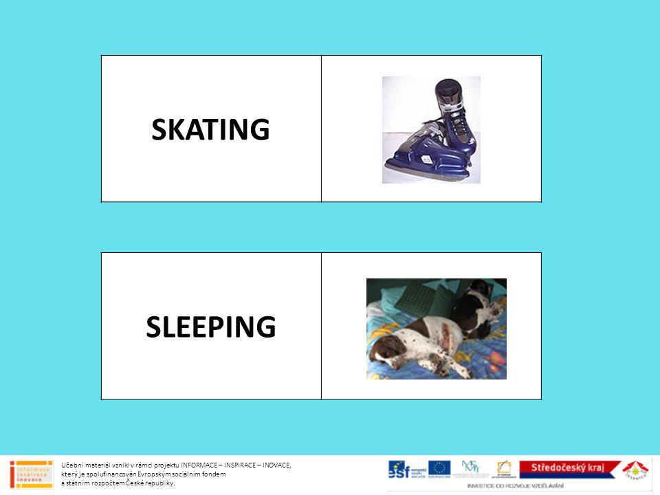 SKATING SLEEPING Učební materiál vznikl v rámci projektu INFORMACE – INSPIRACE – INOVACE, který je spolufinancován Evropským sociálním fondem a státní