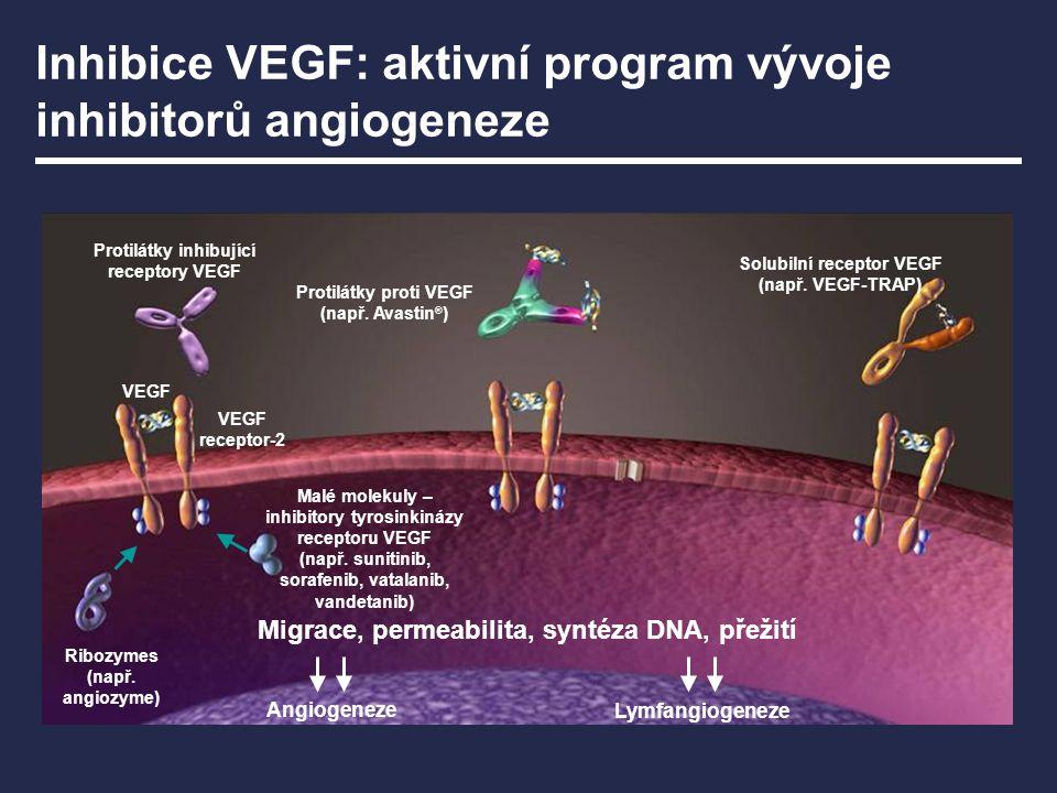 Inhibice VEGF: aktivní program vývoje inhibitorů angiogeneze VEGF VEGF receptor-2 Protilátky proti VEGF (např. Avastin ® ) Protilátky inhibující recep