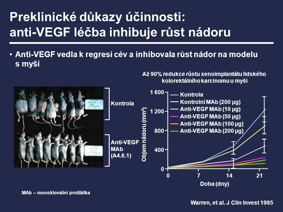 Preklinické důkazy účinnosti: anti-VEGF léčba inhibuje růst nádoru Anti-VEGF vedla k regresi cév a inhibovala růst nádor na modelu s myší Anti-VEGF MA
