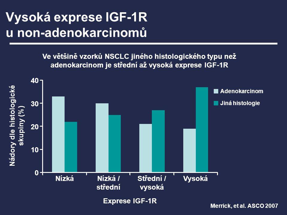 Vysoká exprese IGF-1R u non-adenokarcinomů Merrick, et al. ASCO 2007 Ve většině vzorků NSCLC jiného histologického typu než adenokarcinom je střední a