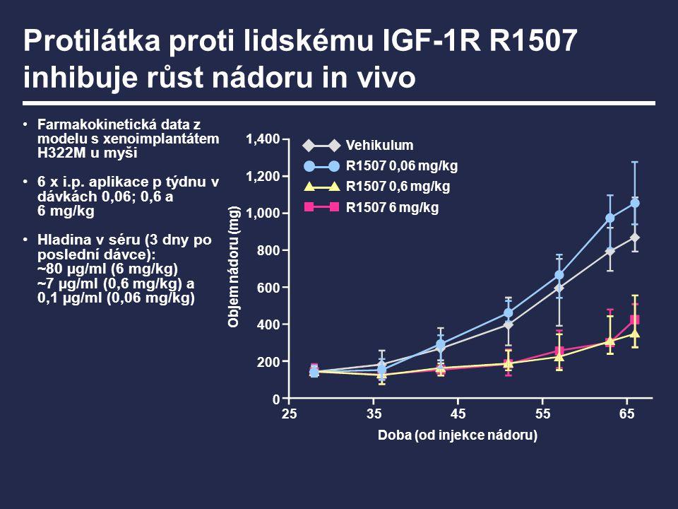 Protilátka proti lidskému IGF-1R R1507 inhibuje růst nádoru in vivo Farmakokinetická data z modelu s xenoimplantátem H322M u myši 6 x i.p. aplikace p