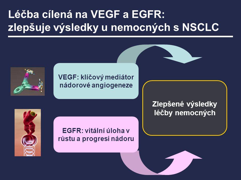 Zlepšené výsledky léčby nemocných VEGF: klíčový mediátor nádorové angiogeneze EGFR: vitální úloha v růstu a progresi nádoru Léčba cílená na VEGF a EGF