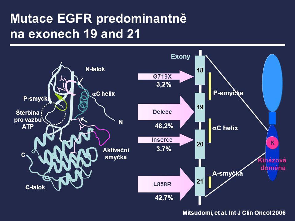K 18 19 20 21 Delece L858R Inserce G719X 3,2% 48,2% 42,7% 3,7% Kinázová doména P-smyčka  C helix A-smyčka Exony Mitsudomi, et al. Int J Clin Oncol 20