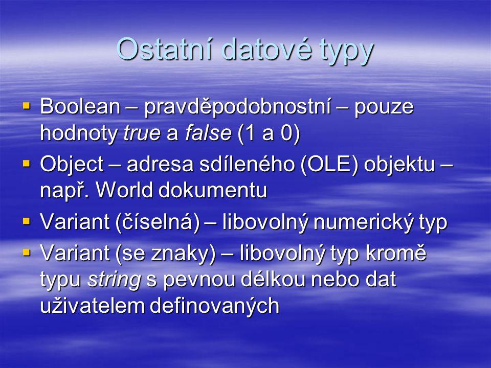 Ostatní datové typy  Boolean – pravděpodobnostní – pouze hodnoty true a false (1 a 0)  Object – adresa sdíleného (OLE) objektu – např.