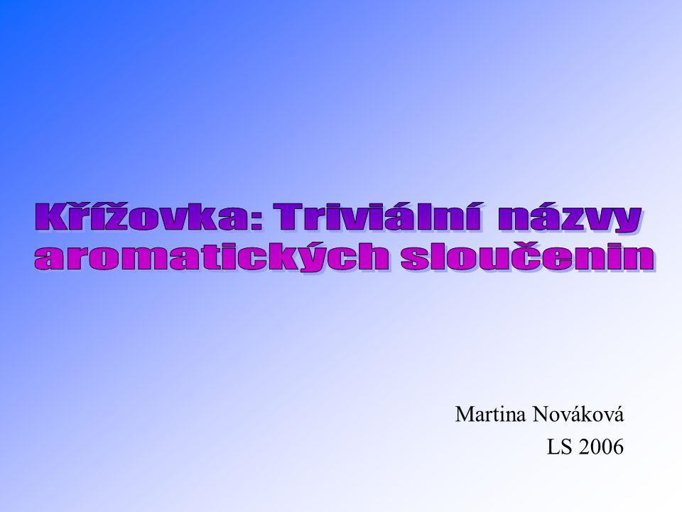 Martina Nováková LS 2006