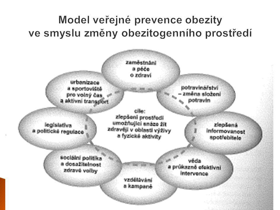 Model veřejné prevence obezity ve smyslu změny obezitogenního prostředí