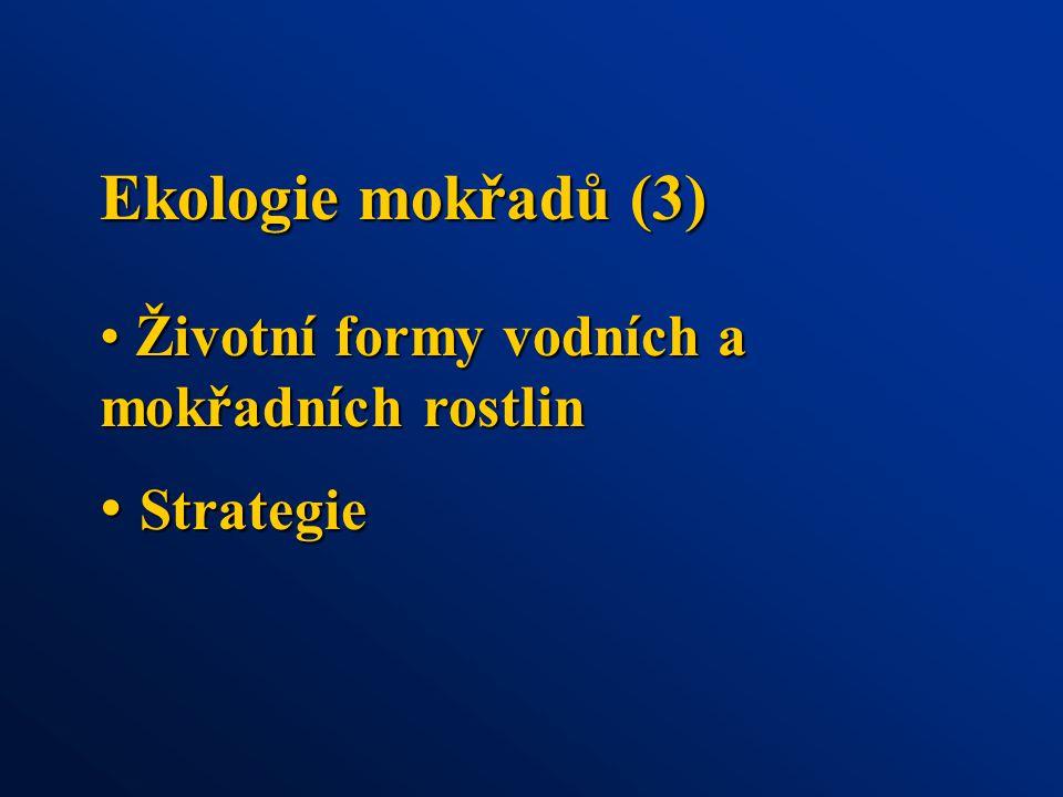 Ekologie mokřadů (3) Životní formy vodních a mokřadních rostlin Životní formy vodních a mokřadních rostlin Strategie Strategie