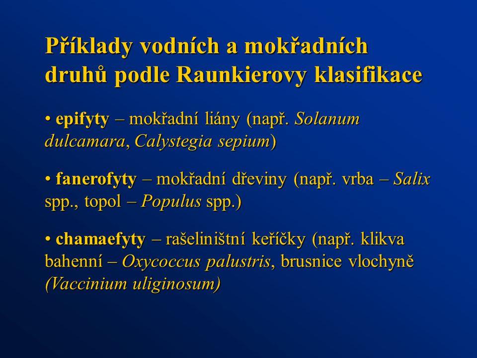 Příklady vodních a mokřadních druhů podle Raunkierovy klasifikace fanerofyty – mokřadní dřeviny (např. vrba – Salix spp., topol – Populus spp.) fanero