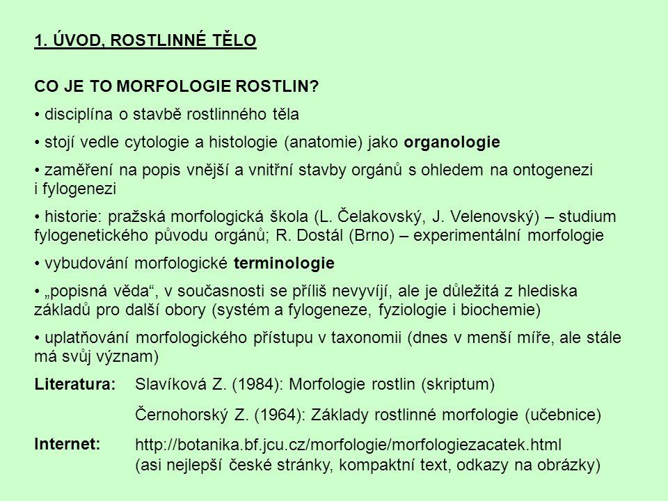 1.ÚVOD, ROSTLINNÉ TĚLO CO JE TO MORFOLOGIE ROSTLIN.