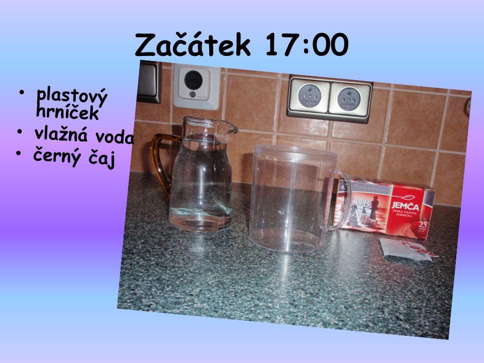 Postup 17:02 do hrníčku jsem nalila vodu dala jsem do něj sáček s čajem