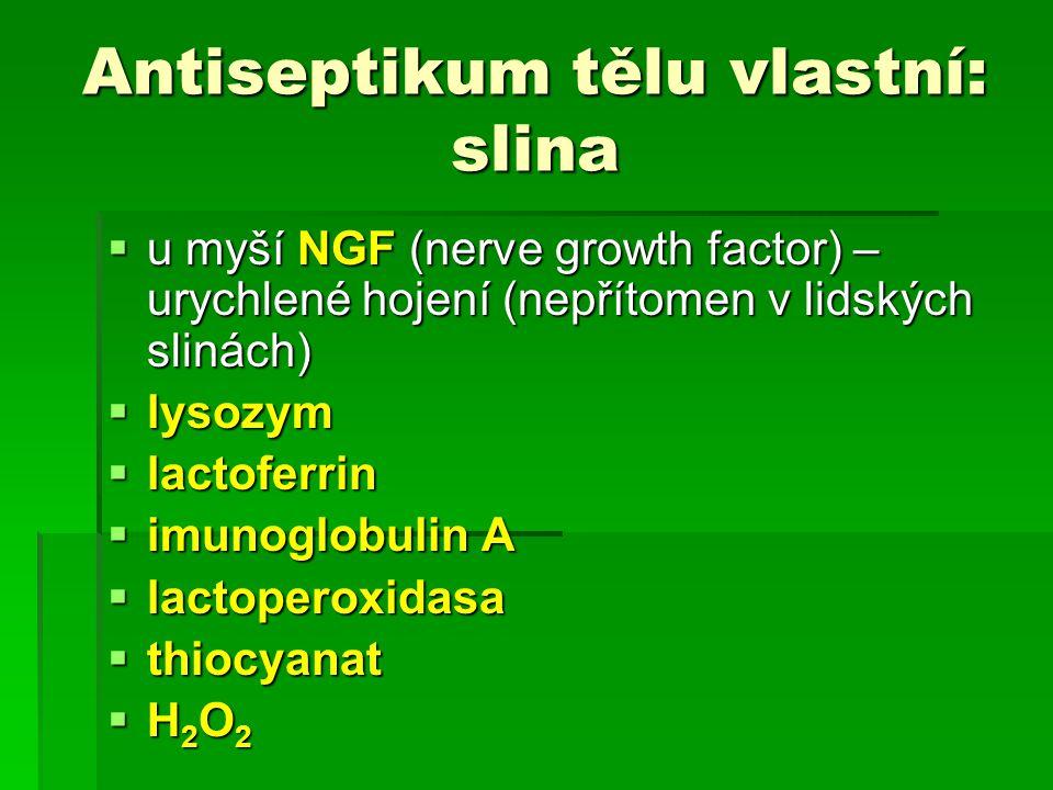 Antiseptikum tělu vlastní: slina lysozym (LYZ)  poprvé popsán Flemingem v r.