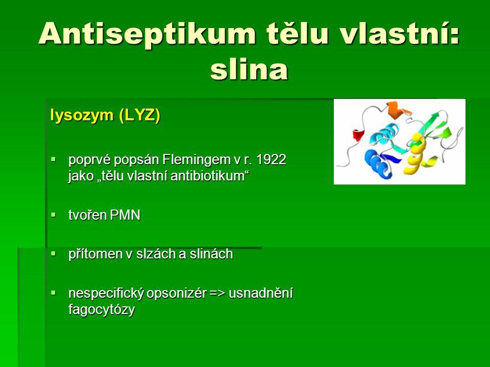 """Antiseptikum tělu vlastní: slina lysozym (LYZ)  poprvé popsán Flemingem v r. 1922 jako """"tělu vlastní antibiotikum""""  tvořen PMN  přítomen v slzách a"""