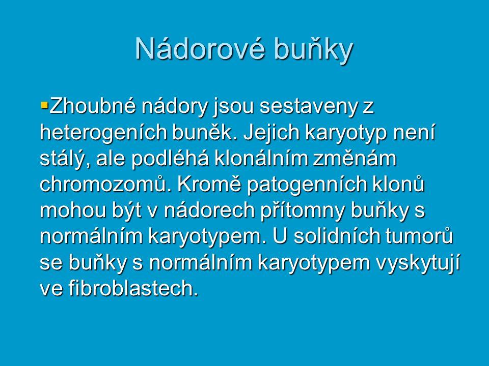 Nádorové buňky  Zhoubné nádory jsou sestaveny z heterogeních buněk. Jejich karyotyp není stálý, ale podléhá klonálním změnám chromozomů. Kromě patoge