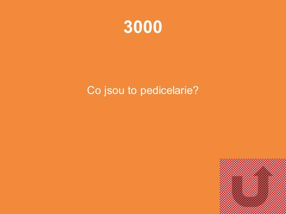 2000 K čemu slouží tzv. Aristotelova lucerna