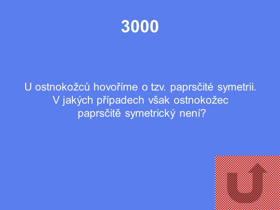 2000 Jakou funkci má tzv. ambulakrální soustava