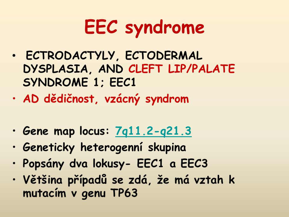 EEC syndrome ECTRODACTYLY, ECTODERMAL DYSPLASIA, AND CLEFT LIP/PALATE SYNDROME 1; EEC1 AD dědičnost, vzácný syndrom Gene map locus: 7q11.2-q21.37q11.2